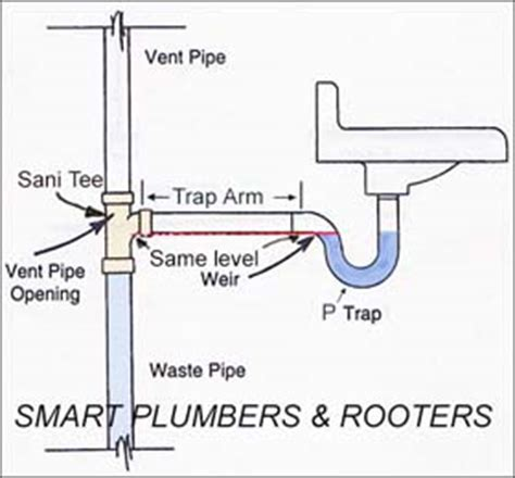 Garbage Disposal Backing Up Into Basement Sink by Plumbing Can P Trap Be Installed Higher Than Drain Entry