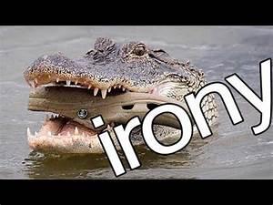 20 Best Ironic Photos, Oh the Irony! - YouTube