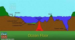 Ocean Floor  Everything You Need To Know