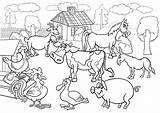 Farm Coloring Printable Animals Animal Getdrawings sketch template