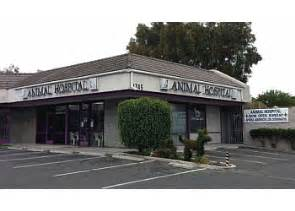 17th animal hospital 3 best veterinary clinics in santa ca threebestrated
