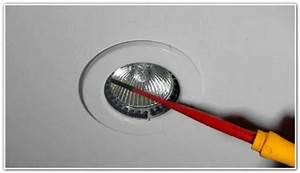 High ceiling light bulb changer integralbook