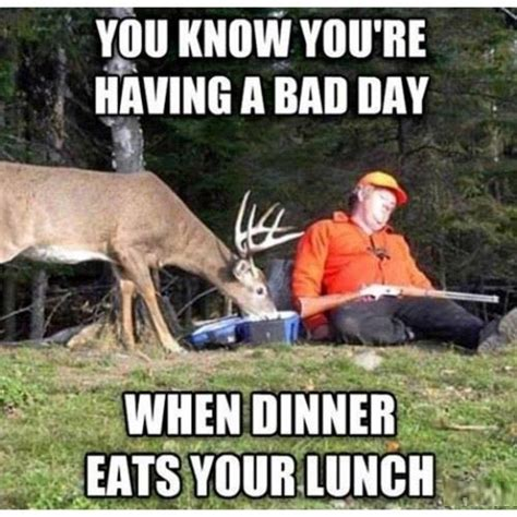 Funny Deer Hunting Memes - funny animal picture of a deer eating a sleeping hunter s lunch