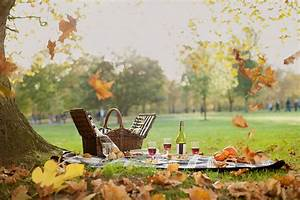DUKES Hotel Launches Gourmet Picnic Service in Green Park