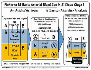 25  Best Ideas About Arterial Blood Gas On Pinterest