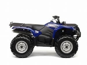 2009 Yamaha Grizzly 350 4x4 Irs