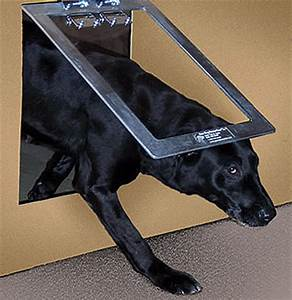 preparing your outdoor dog for winter With dog house doors for winter