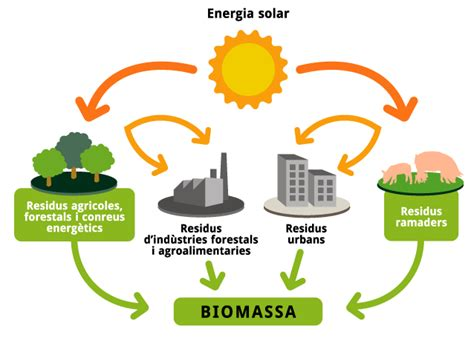 imagenes de energia solar biomasa