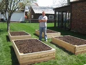 Raised, Garden, Beds, Versus, Row, Gardening