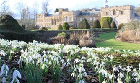 snowdrop gardens snowdrop gardens to visit this february garden life style express co uk