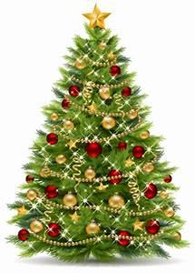 Santa Trees Christmas Tree Farm About Us