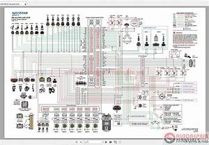International Navistar Dt466 Engine Diagram Dt466 Fuel Injection Pump Diagram Wiring Diagram