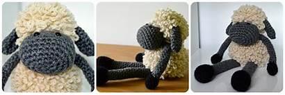 Sheldon Sheep Loop Stitch Crochet Tutorial Coop