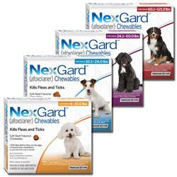 nextguard for dogs breeds picture