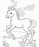 Coloring Pages Disney Horse Horses Printable Getcolorings Elegant Colorings sketch template