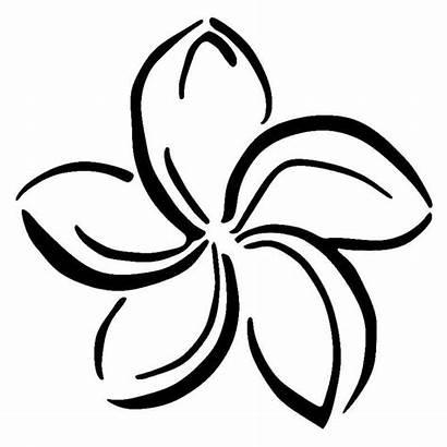 Plumeria Flower Vinyl Stickers Hawaii Flowers Fancy