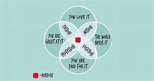 Embracing Our Ikigai  How A Japanese Philosophy Can