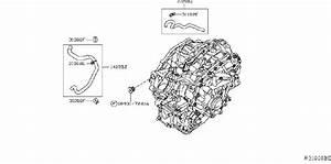 Nissan Murano Automatic Transmission Control Module  Cvt