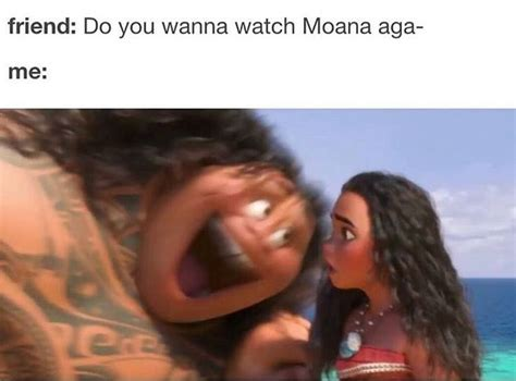 Moana Memes - 17 best images about moana on pinterest disney moana disney and disney princess