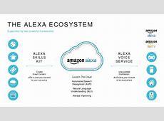 Amazon's Echo The Present and Future of Alexa Donn