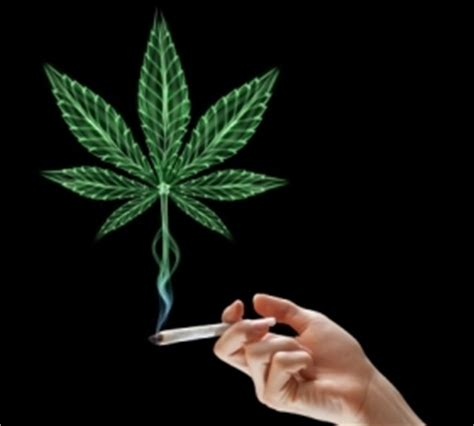 global  easing cannabis withdrawal