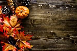 Thanksgiving, Pumpkin, Background