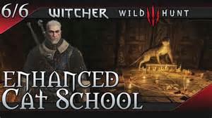 The Witcher 3  Wild Hunt Enhanced Cat  Feline  School Gear