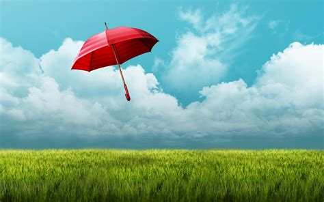 umbrella fields hd nature  wallpapers images