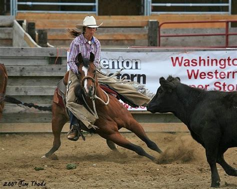 cutting horses horse western cow quarter cows riding than rider cut stallions cowgirl american does without bulls smarter reining cowboy