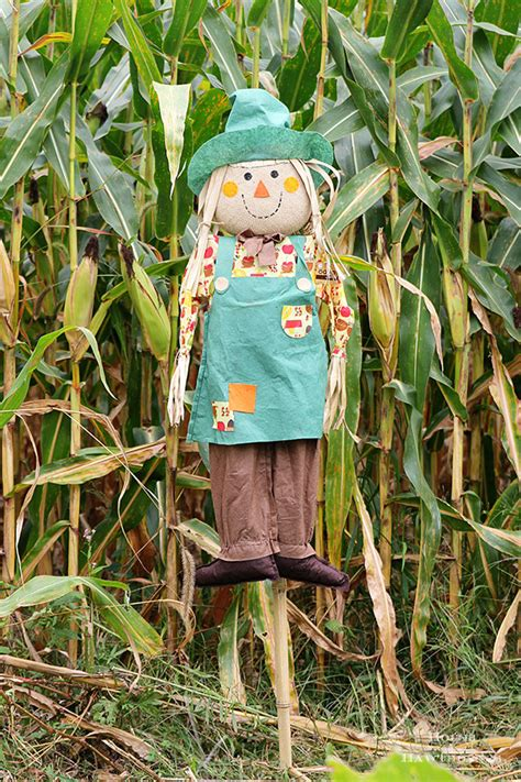 Diy Scarecrow Tutorial  House Of Hawthornes