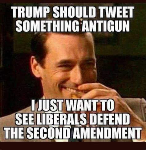 Political Memes 2018 - sad the only thing that could get liberals to defend the second amendment
