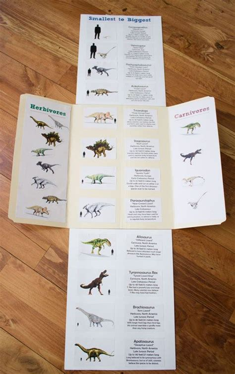 dinosaur cards  lap book  images dinosaur cards
