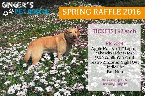 fundraiser gingers pet rescue