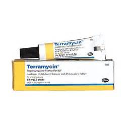 terramycin for cats terramycin ophthalmic ointment terramycin eye ointment