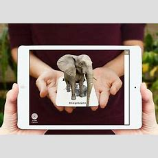 Animal 4d Cards And Animal 4d Food Cards Combo, Augmented Reality Flashcards 5391528220007 Ebay