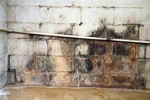 Feuchtigkeit Wand Messen Werte : keller streichen der gro e ratgeber mit vielen tipps ~ Lizthompson.info Haus und Dekorationen