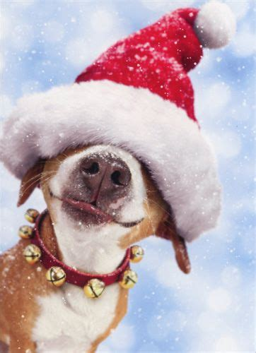he sees you when you re peeking merry christmas it s beginning to alot like christmas