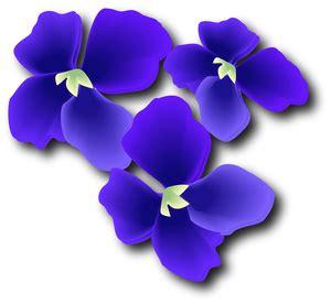 violelt clipart clipground