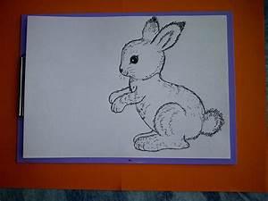 Zeichnungen Mit Bleistift Für Anfänger : zeichnen lernen f r anf nger wie malt man einen hasen kaninchen drawing an easter bunny ~ Frokenaadalensverden.com Haus und Dekorationen