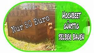 Hochbeet Selber Bauen Günstig : hochbeet f r nur 50 euro selber bauen garten diy ~ A.2002-acura-tl-radio.info Haus und Dekorationen