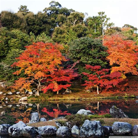 autumn japan  hd desktop wallpaper  tablet