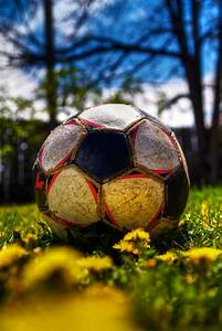 Free Images Spring Has Sprung Picture Of The Soccer Ball In My Back