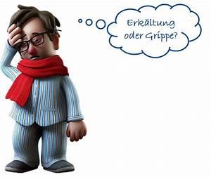 Kopf Und Gliederschmerzen Fieber Ohne Schnupfen : erk ltung vs grippe was sind die unterschiede ~ Articles-book.com Haus und Dekorationen