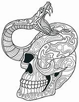 Skull Coloring Pages Sugar Snake Adult Adults Rattlesnake Skulls Printable Colouring Drawing Dead Intricate Ball Python Books Mandala Sheets Colour sketch template