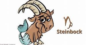 Schütze Aszendent Berechnen : sternzeichen steinbock eigenschaften charakter und horoskop ~ Themetempest.com Abrechnung