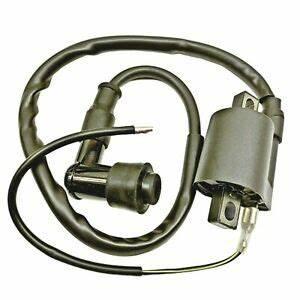 2000 Suzuki King Quad 300 Wiring Diagram : new ignition coil 1999 2002 suzuki ltf300f king quad 99 00 ~ A.2002-acura-tl-radio.info Haus und Dekorationen