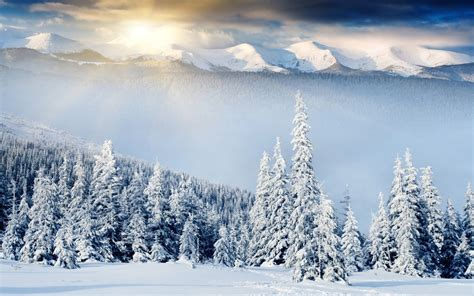 Fantastic Winter Scenery 18723 1920x1200 Px Hdwallsourcecom