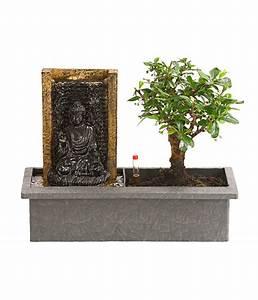 Pflege Von Bonsai Bäumchen : bonsai mit brunnen dehner ~ Sanjose-hotels-ca.com Haus und Dekorationen