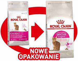 Royal Canin Exigent : royal canin kot exigent savour 2kg 6212001572 oficjalne archiwum allegro ~ Eleganceandgraceweddings.com Haus und Dekorationen