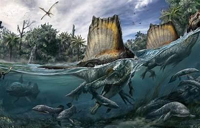 Spinosaurus Spinosaurid Cretaceous Period Spiny Member Lizard